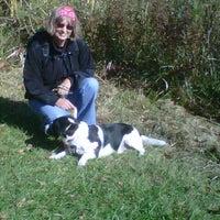 10/8/2012にGordon D.がLaurel Creek Conservation Areaで撮った写真