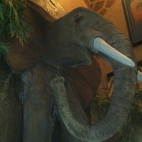 Photo taken at Elephant Bar Restaurant by Mel C. on 11/21/2012