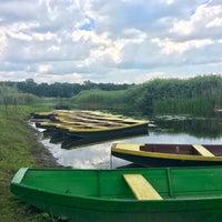 Photo taken at Rezervat Prirode Obedska Bara by Miroslav M. on 5/27/2017