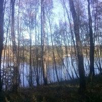 Photo taken at Зелёный Шум by Yanis K. on 10/13/2016