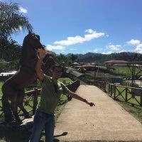 Photo taken at Zoologico Joya Grande by Roxana Z. on 2/15/2016
