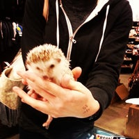 Photo taken at Zumiez by Lynsey D. on 11/11/2014