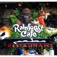 Photo taken at Rainforest Cafe Dubai by Andri P. on 10/26/2012