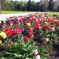 Снимок сделан в Ботанический сад КубГАУ им. И.С. Косенко пользователем Tanya Z. 4/24/2013