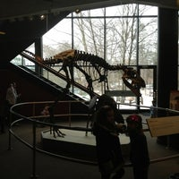 Photo taken at Cleveland Museum of Natural History by Beth W. on 2/9/2013
