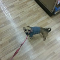 Photo taken at Petco by Leslie G. on 1/11/2013