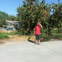 Photo taken at two sisters upick apricots by Leroy G. on 6/8/2013