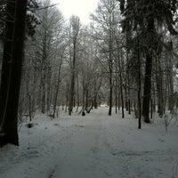 Photo taken at Priekuļi by Dita S. on 1/23/2013