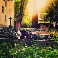 Photo taken at Alter Garnisonsfriedhof by Felipe T. on 6/18/2013