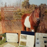 Photo taken at Assateague Visitor Center by Barry G. on 7/8/2016