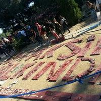 6/3/2013 tarihinde Abdullah A.ziyaretçi tarafından Taksim Gezi Parkı'de çekilen fotoğraf