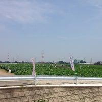 7/16/2014にLeh ou H.が道の駅 立田ふれあいの里で撮った写真