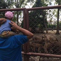 Photo taken at Lopburi Zoo by ผู้หญิงเข้าใจยาก P. on 10/1/2016
