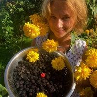 Photo taken at Озерецкое by LISA on 8/7/2016