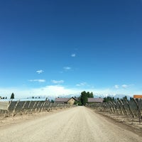 Photo taken at Dominio del Plata Winery by Adolfo A. on 10/12/2016