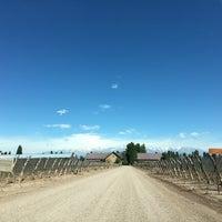 Das Foto wurde bei Dominio del Plata Winery von Adolfo A. am 10/12/2016 aufgenommen