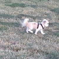 Photo taken at Dougherty Hills Dog Park by Daris J. on 5/29/2013