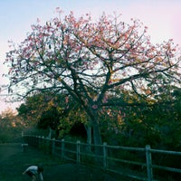 Photo taken at Balboa Park Dog Park by Terry S. on 11/8/2012