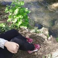 Photo taken at Pala Mustafa nın Çiftliği by Yasemin Y. on 4/7/2016