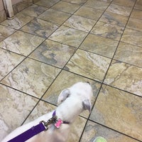 Photo taken at Parker Animal & Bird Clinic by Candace H. on 6/29/2017