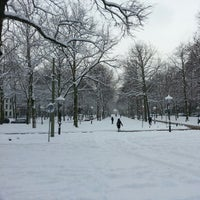 Photo taken at Lange Voorhout by Leonieke A. on 1/15/2013