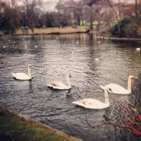 Photo taken at St James's Park by Clay V. on 2/3/2013