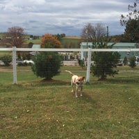 Photo taken at Connie Winters Kennels, Inc. by Linda S. on 10/7/2014