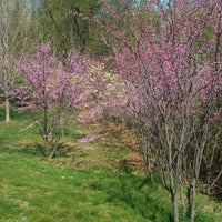 Photo taken at Central Park - East Drive by Olha S. on 5/2/2014