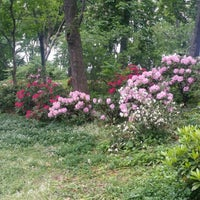 Photo taken at Central Park - East Drive by Olha S. on 5/22/2014