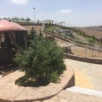 Photo taken at Barajin Zoo | باغ وحش باراجين by Armin A. on 5/29/2016