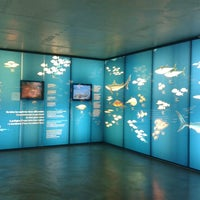 Foto tomada en Museu de la Pesca por Alfons G. el 12/11/2013
