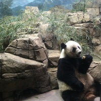 Photo taken at Smithsonian National Zoological Park by Ani on 4/27/2013