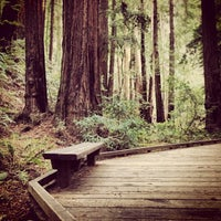 Photo taken at Muir Woods National Monument by Andrew on 1/21/2013