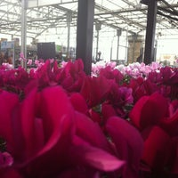 Photo taken at Lowe's Home Improvement by Katie O. on 10/20/2012