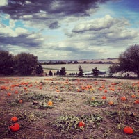 Photo taken at Vala's Pumpkin Patch by Amanda S. on 10/21/2013