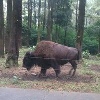 Photo taken at Taman Safari Indonesia II by Sony K. on 2/10/2013