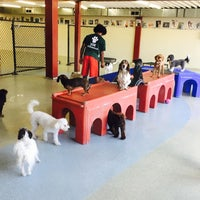 Photo taken at Urban Paws by amy f. on 6/12/2017