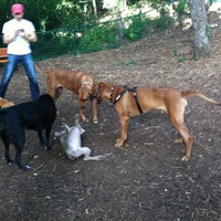 Photo taken at Retreat At Barton Creek Dog Park by Pauly M. on 7/24/2013