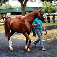 Photo taken at Ocala Breeders Sale by Eline E. on 4/25/2013