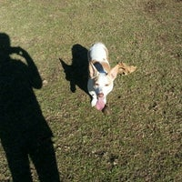 Photo taken at Baldy View Dog Park by Katie A. on 1/5/2013