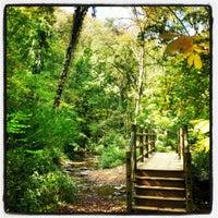 Photo taken at Edwin Warner Park by Lyn H. on 10/12/2012