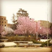 Photo taken at Metro Ciudad Universitaria by Ricardo C. on 3/13/2014