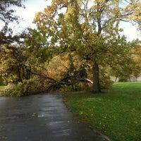 Foto tirada no(a) Inwood Hill Park por Kelani C. em 10/30/2012