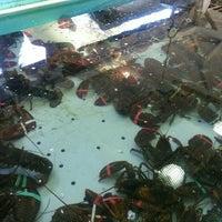 6/13/2015에 alan p.님이 Ogunquit Lobster Pound Restaurant에서 찍은 사진