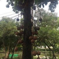 Das Foto wurde bei Thonburirom Park von Ngor E. am 7/9/2018 aufgenommen