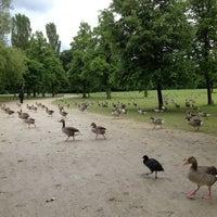 Photo taken at Englischer Garten by Abdullah A. on 5/29/2013