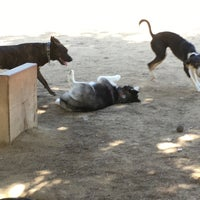 Photo taken at Hermon Dog Park by Ashley on 3/27/2017