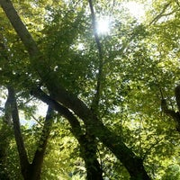 Photo taken at Marmaris milli Parkı by Sedat C. A. on 8/8/2013