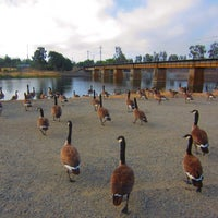 Photo taken at Alameda Creek Trail (Niles) by Alastair G. on 7/2/2014