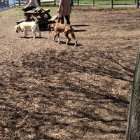 Photo taken at Coronation Dog Park by Amanda B. on 5/4/2013